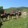 Horse riding in Borovets